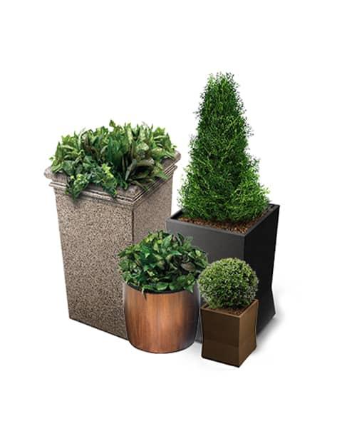 Planter Series